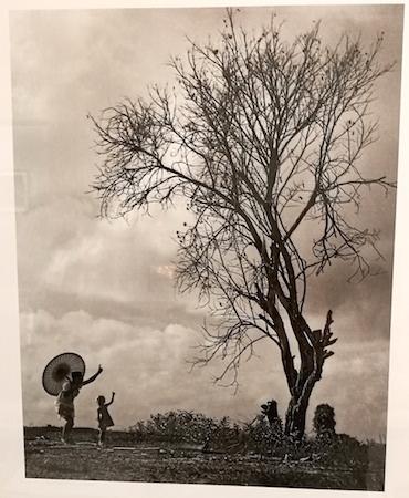 """Lui Hock Seng, """"Tree of Life, Jurong"""" c. 1960s - 1970s"""