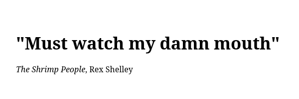A quote by Rex Shelley inspires some of the work at A Bigger Party Than Expected